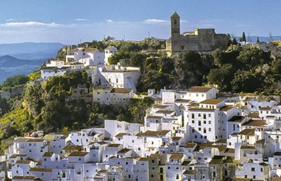 Platinum Estates will open another luxury hotel in Casares